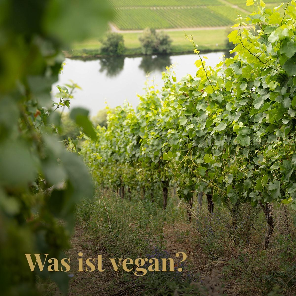Was ist vegan? - Bioweingut Hubertushof